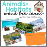 Work Bin Task Cards - Animal Habitats (72 cards with 4 levels)