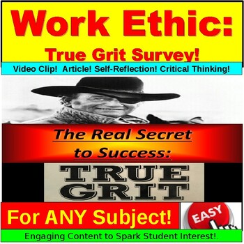Work Ethic Survey and Reflection