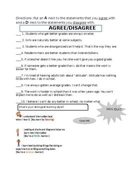 Work Habits/Study Skills, and Organizational Skills Assessment, Learning  Styles