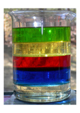 Density of Liquids Lab and Rubric (Mass, Float, Sink, Buoy
