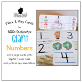 Work & Play Cards (Giant) Numbers with Pictures