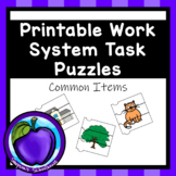 Work System Task Puzzles - Common Items