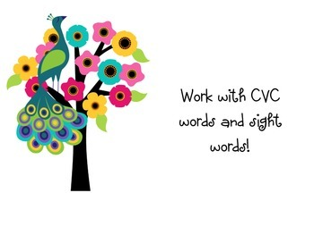 Work with CVC words and sight words