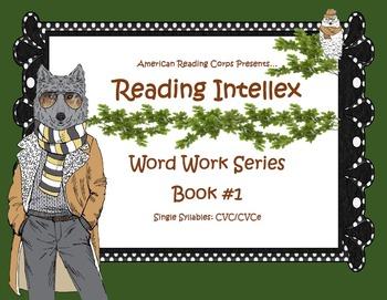 Decoding Worksheets: Short A, E, I, O, U and Long Vowels, Vowel Teams Too!