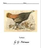 Workbook info about Turkeys  3 reading levels grade 1 to 3.