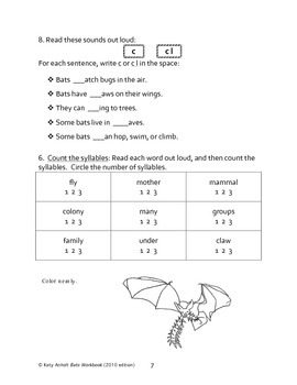 Workbooks for Informational Readers: BATS! (2010 edition)