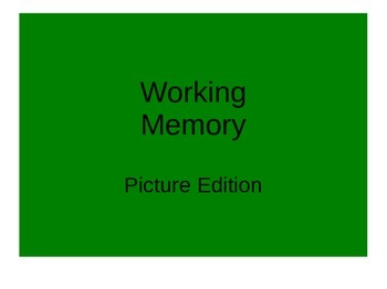 Working MemoryPicture Edition