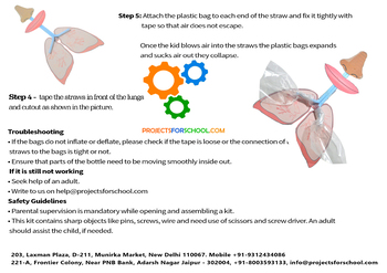Working Model of Lungs Easy DIY Kit for 3+ Kids, Biology Science Experiment Kit