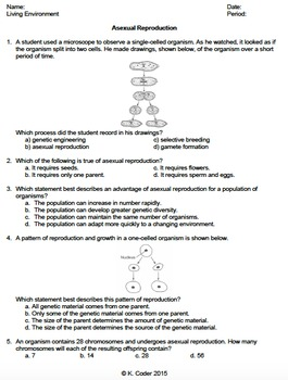 Worksheet - Asexual Reproduction *EDITABLE*