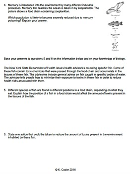 Worksheet - Bioaccumulation *EDITABLE*