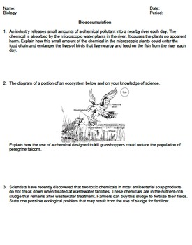 Worksheet - Bioaccumulation *EDITABLE*