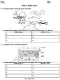 Worksheet - Biotic vs. Abiotic Factors *EDITABLE*