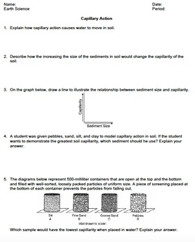 Worksheet - Capillary Action *EDITABLE*