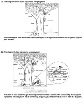 Worksheet - Ecological Organization *EDITABLE*
