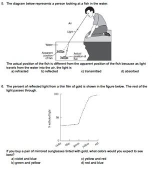 Worksheet - Energy Interactions *Editable*