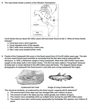 35 Fossil Record Worksheet Answers - Free Worksheet ...