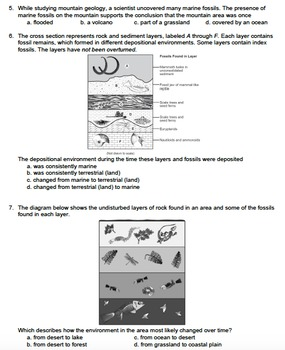 Worksheet - Environmental Change & the Fossil Record *EDITABLE*