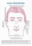 Worksheet Facial Porportions Template