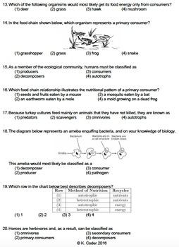 Worksheet - Feeding Relationships (Multiple Choice) *EDITABLE*