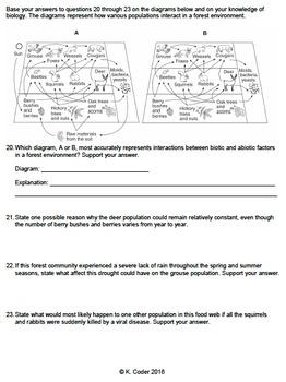 Worksheet - Food Webs (Constructed Response) *EDITABLE*