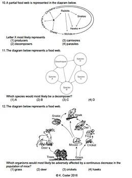 Worksheet - Food Webs (Multiple Choice) *EDITABLE*
