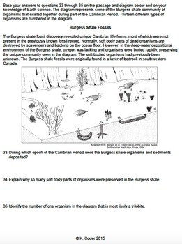 Worksheet - Geologic History *EDITABLE*
