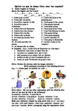French Teaching Resources. Worksheet: Infinitives: Qu'est-