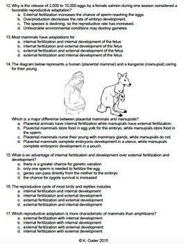 Worksheet - Internal vs. External Fertilization and Development *EDITABLE*