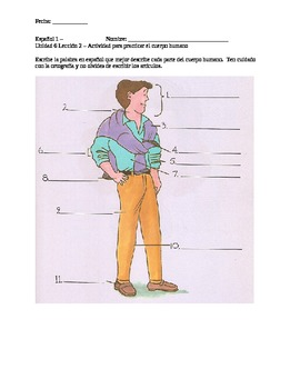Label the Parts of the Body + Face in Spanish Worksheet