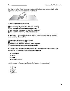 Biology Worksheet - Microscope Practice