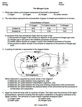 nitrogen cycle worksheets teaching resources teachers pay teachers Cell Diagram to Label worksheet nitrogen cycle *editable*