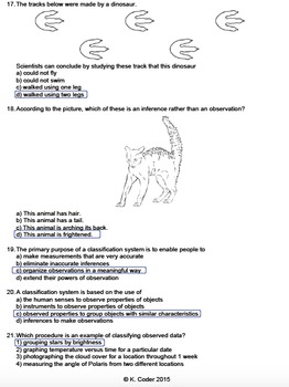 Worksheet - Observations, Inferences, Classification (Editable)