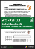 Worksheet - Squirrel Genetics With Incomplete Dominance and Codominance (Part C)