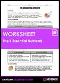 Worksheet - The Six Essential Nutrients