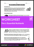 Worksheet - The Six Essential Nutrients