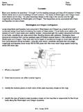 Worksheet - Tsunamis *Editable*