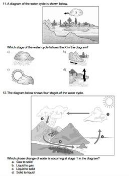 Worksheet - Water Cycle (Multiple Choice) *EDITABLE*