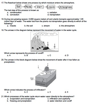 Worksheet - Water Cycle (Multiple Choice) *EDITABLE*