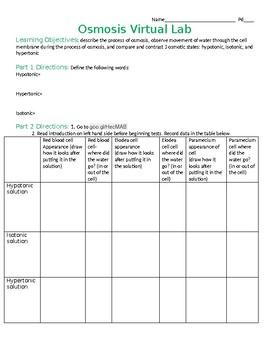 Worksheet for Osmosis Virtual Lab (Glencoe) by Teaching Science ...