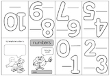 Worksheet numbers primary