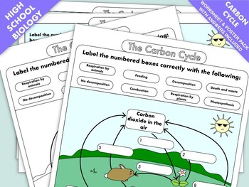 Worksheets and Posters on the Carbon Cycle by Fresh Lettuce Resources