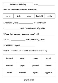 Worksheets for BELLA'S BAD HAIR DAY by Stephen Michael King - Vocab