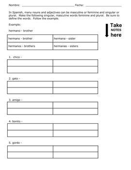 Worksheets to Practice Gender & Number: Simple Worksheets for Spanish Beginners!