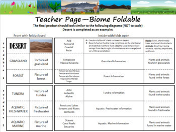 Ecology: World Biomes Foldable
