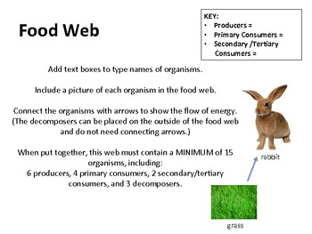 World Biomes Group PowerPoint Project