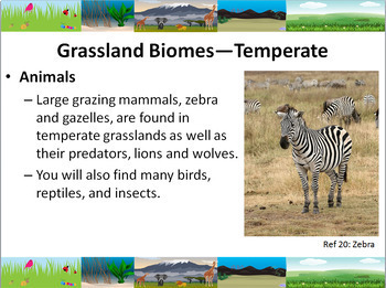 Ecology: World Biomes Powerpoint Slide Show