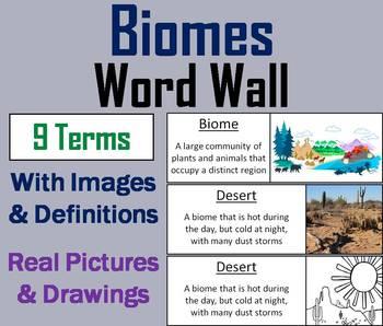 World Biomes Word Wall Cards (Ecosystems Unit: Animal Habitats)
