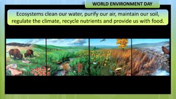 World Environment Day PowerPoint Presentation