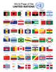 World Flag Charts
