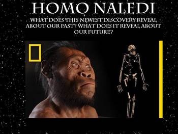 World History Paleolithic & Neolithic Bundle Lesson